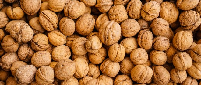 Foods That Improve Memory Function